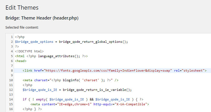 Add the code into your header.php file