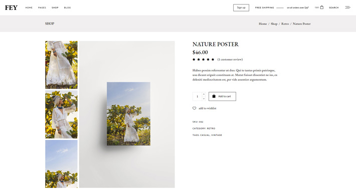 A Product post type in the Fey Modern e-Commerce Theme