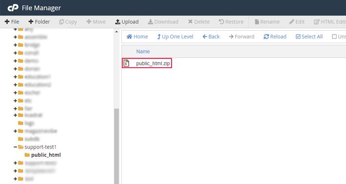 Uploaded zip file in your public folder