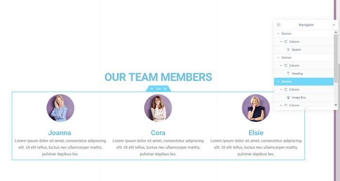 Team member section