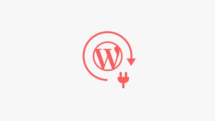 How Do WordPress Plugins Work