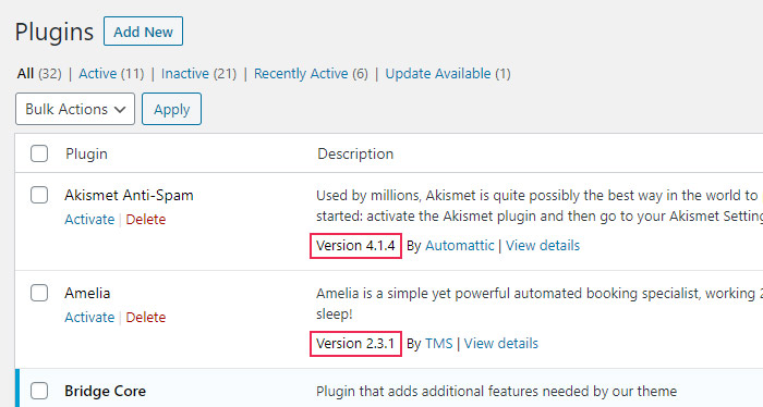 How to Check the Version of Your Plugins