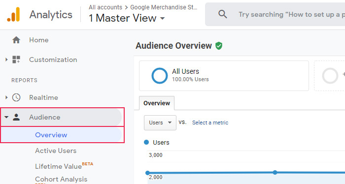 Audience Overview Settings