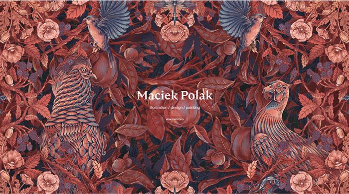 Maciek Polak