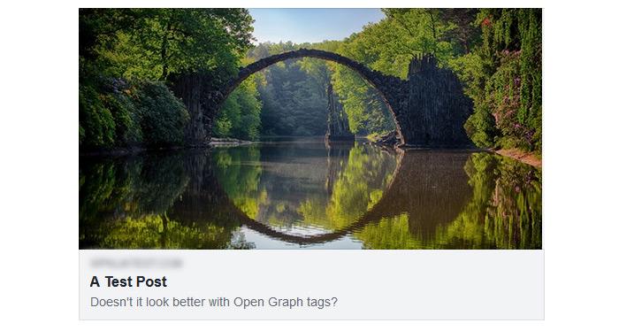Facebook Open Graph Test Preview