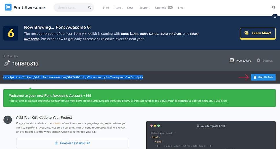 Font Awesome Copy Kit Code