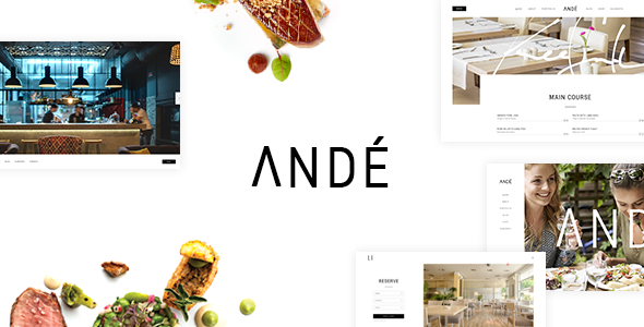 Ande WordPress Theme