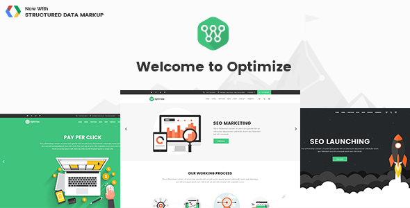 Optimize Wordpress Theme
