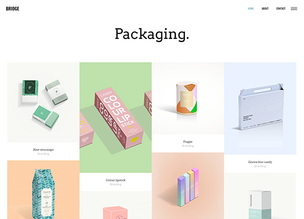 Package Design Portfolio Bridge Theme Demo